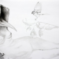 <p>Fuyapasa Landscape 2 : Girly Billy on the Mesa (detail 2), 2011.  Graphite on bristol paper, 144 x 36 inches</p>