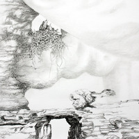 <p>Fuyapasa Landscape 2 : Girly Billy on the Mesa (detail 3), 2011.  Graphite on bristol paper, 144 x 36 inches</p>