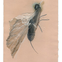 <p>Hummer, 2014.  Mixed media and found objects on fabriano paper, 8 x 10 inches</p>