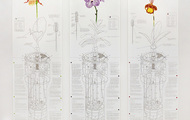 """<p><strong>Mechanical Orchid Triptych</strong>, 10 color screenprints on Coventry Rag paper, Edition of 25,&nbsp;&nbsp;44""""x 50"""", 2014</p>"""
